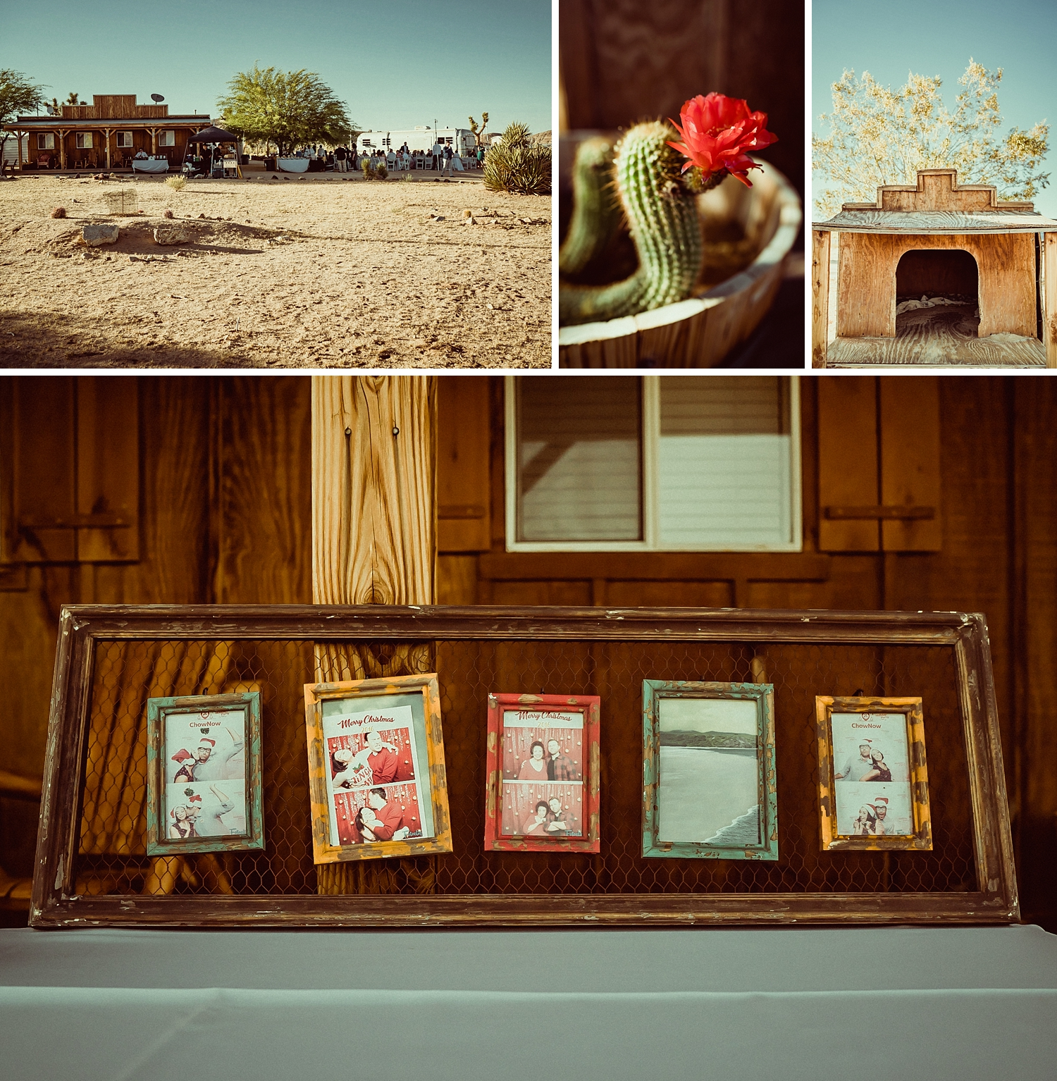Joshua Tree Wedding Photos | airbnb wedding