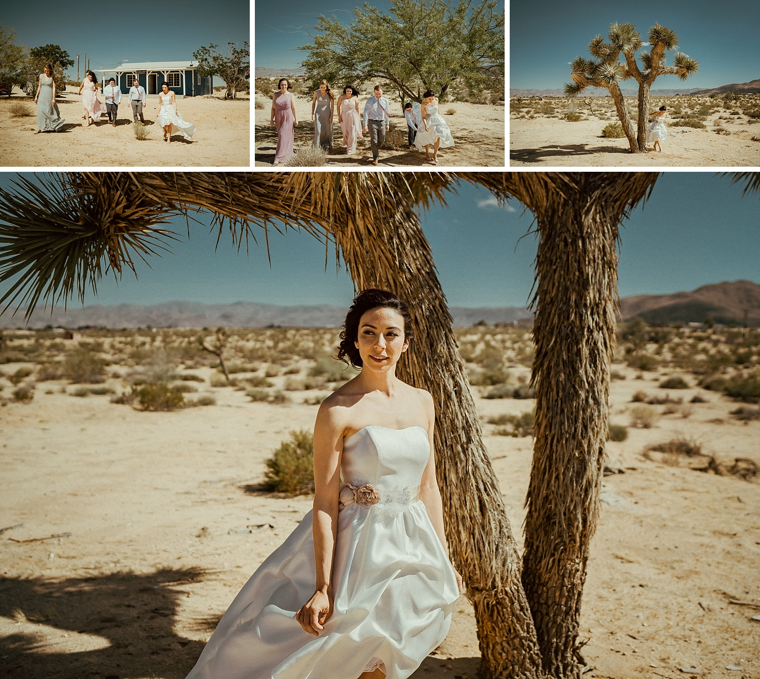 Joshua Tree Wedding Photos | Desert Bride Photos