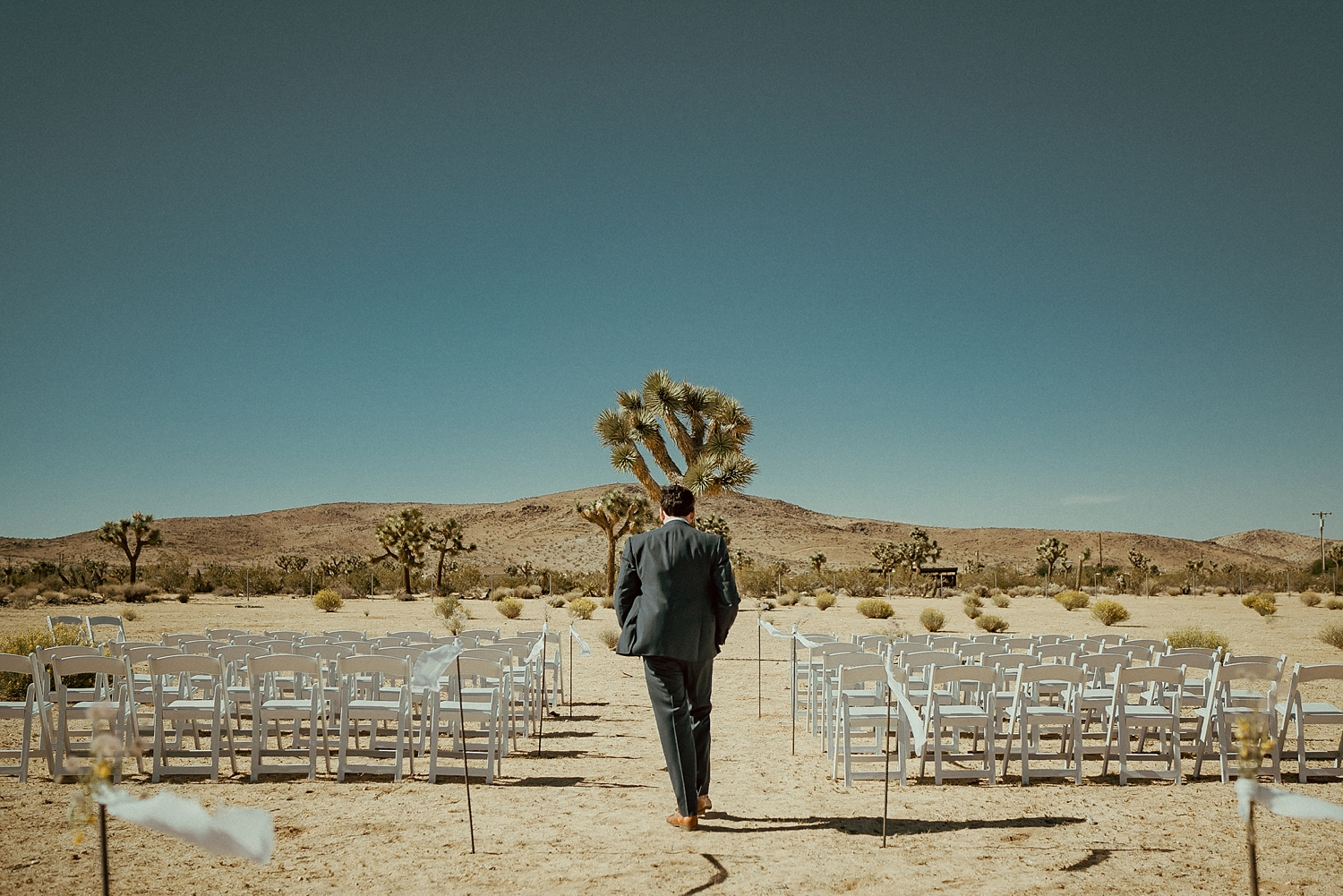 Joshua Tree Wedding Photos | Desert Groom Photos