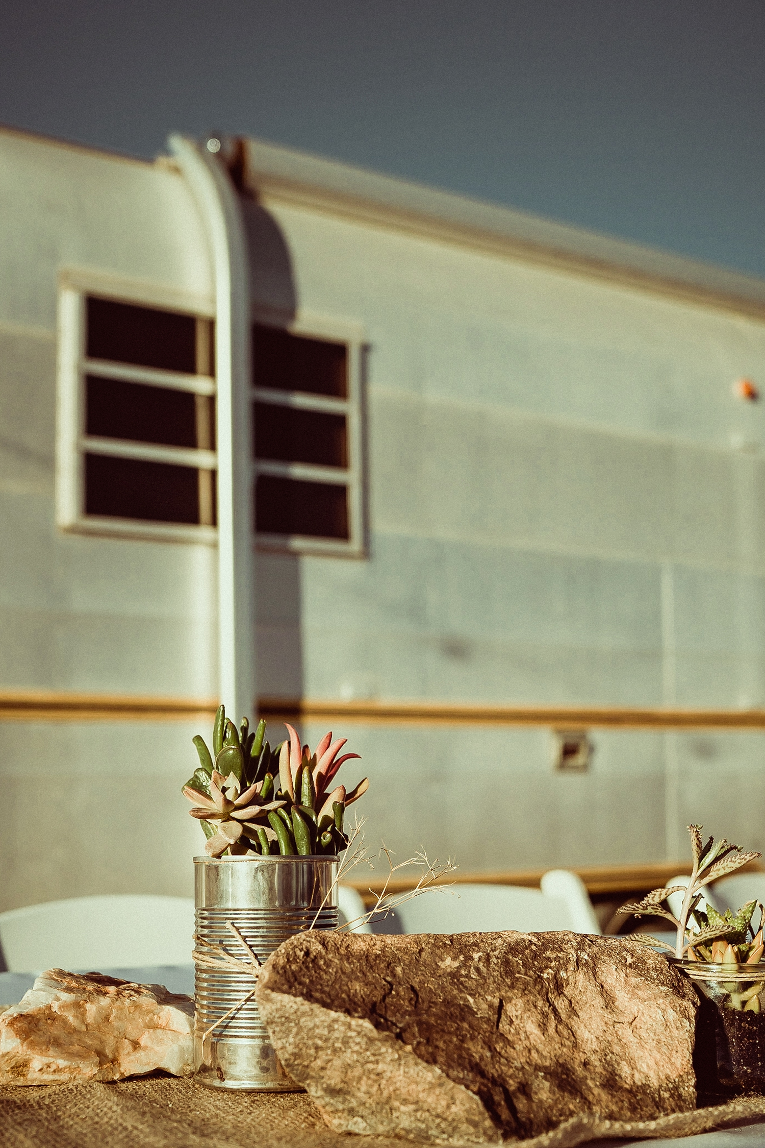 Joshua Tree Wedding Photos | diy succulent center pieces